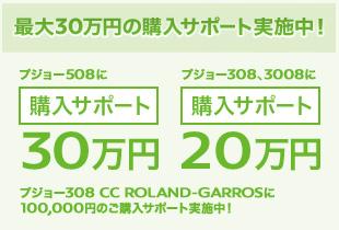 最大30万円のご購入サポート実施中!