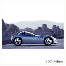 607 Feline
